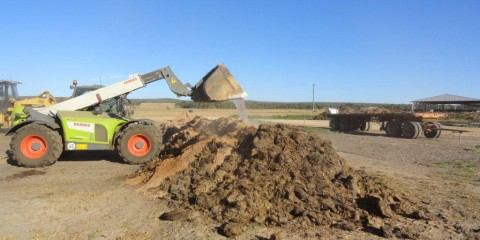 Dairy Composting